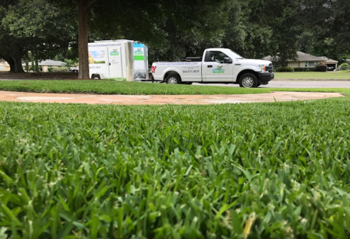organic lawn care in Metairie